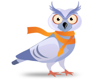 owl pigeon