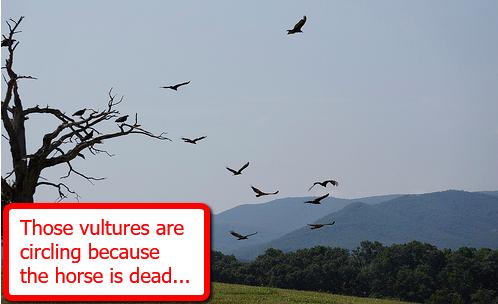 vultures-circling-horse-dead